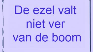 Geliefde Mooiespreuken.net - Spreuken en gezegden voor elke dag #ZR02