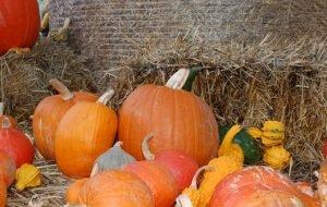weerspreuken oktober